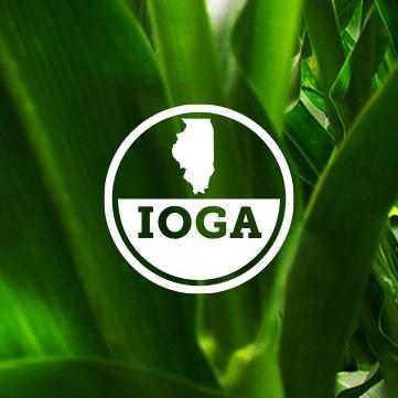 IOGA_Work_Thumbnail