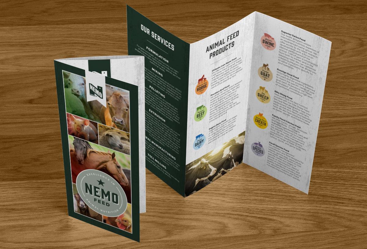 NEMO-Brochure